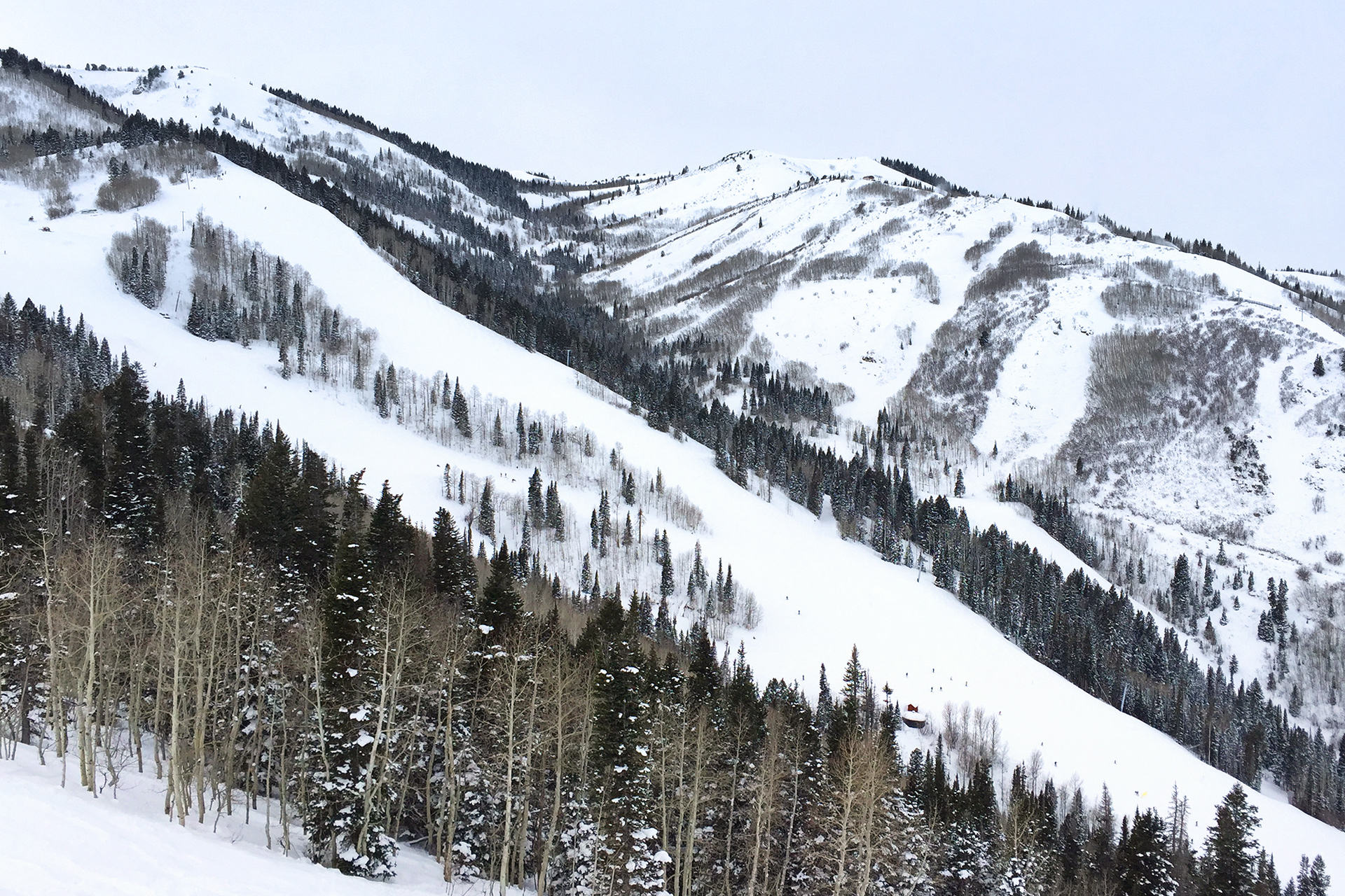 wanderingaway : skiing at park city, canyons, snowbird, and alta